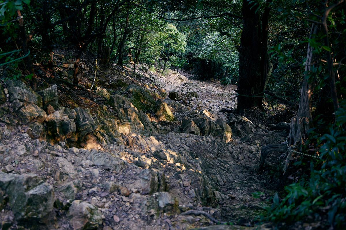 金華山-岩がゴツゴツとした下り