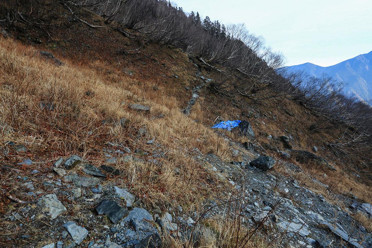 【北岳】登山百景-分岐が多い