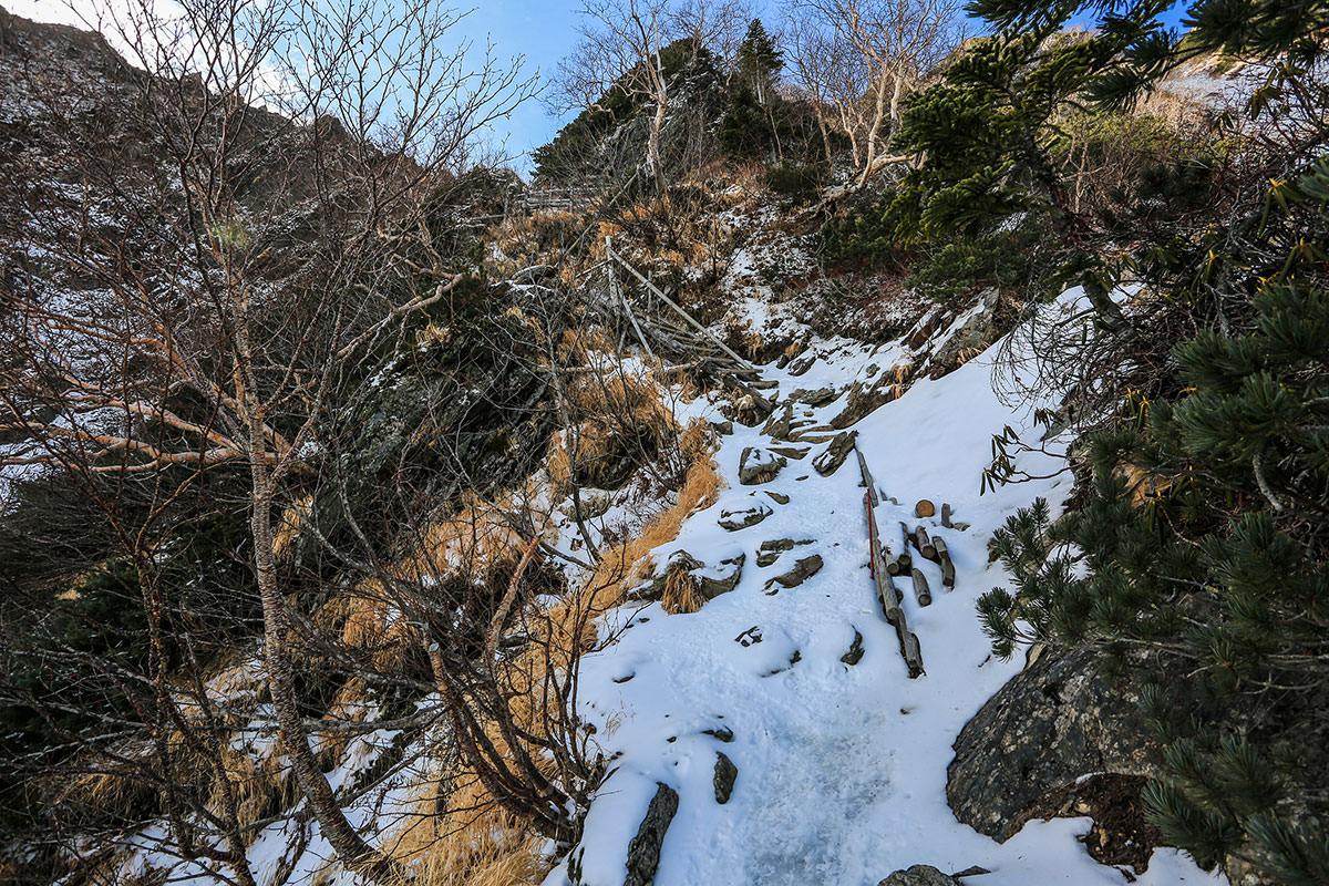 【北岳】登山百景-階段はけっこうな高さ