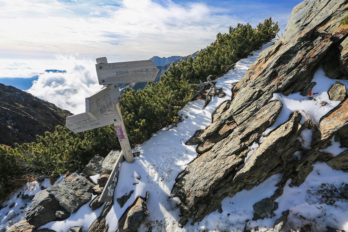 【北岳】登山百景-稜線に出た