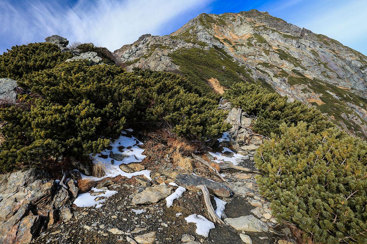 【北岳】登山百景-北岳もうすぐ