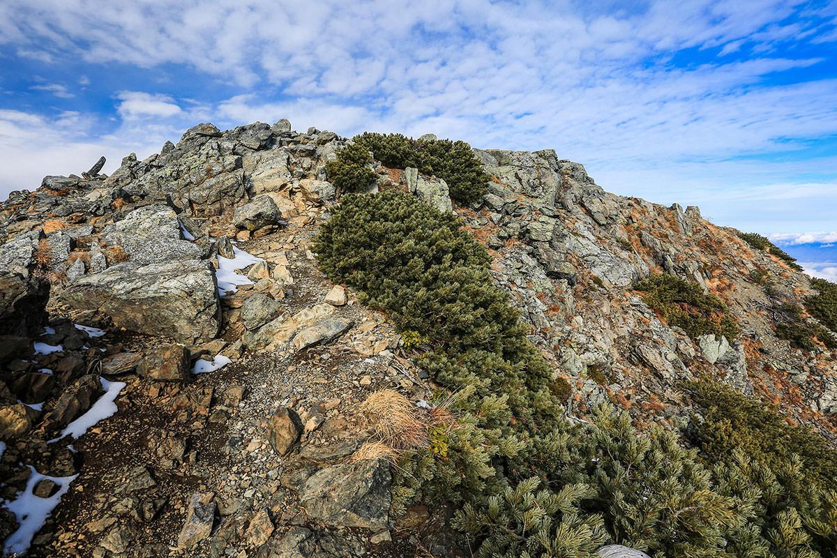 【北岳】登山百景-山頂は台形の上