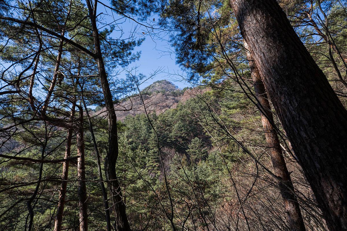 【子檀嶺岳】登山百景-山頂が見える