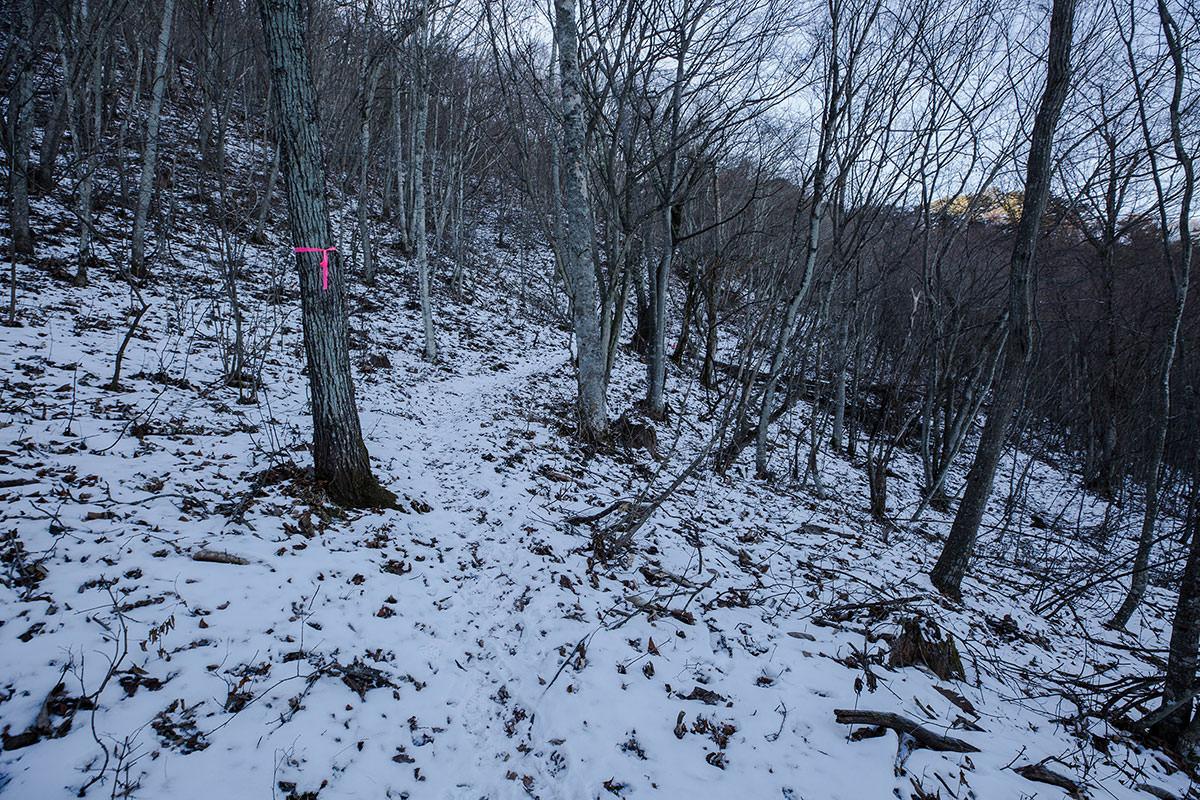 【子檀嶺岳】登山百景-山の北側へ