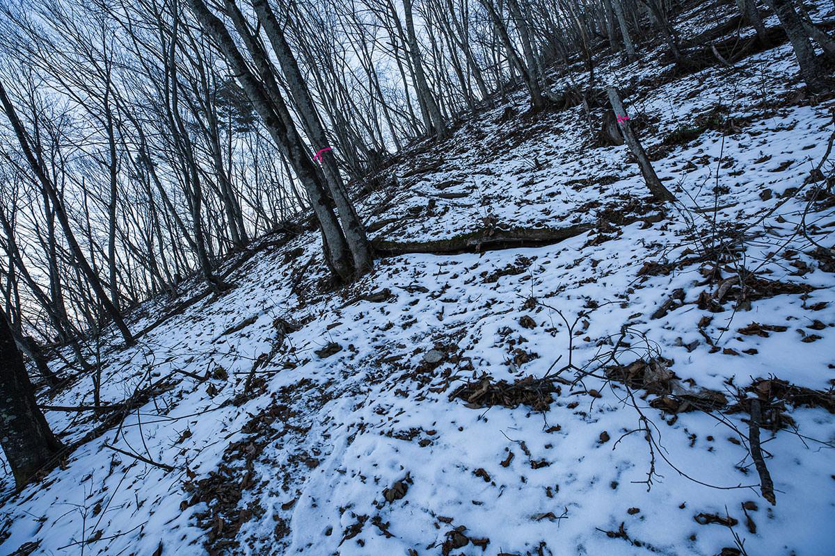 【子檀嶺岳 当郷管社コース】登山百景-雪の斜面を登っていく