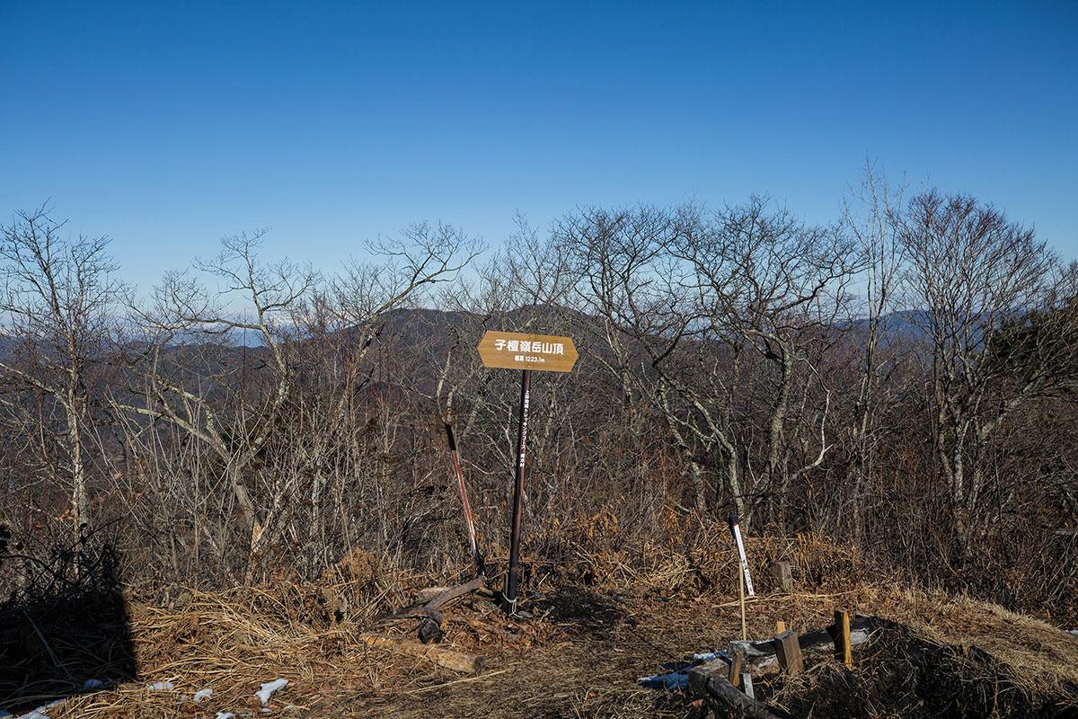 【子檀嶺岳】登山百景-山頂の標