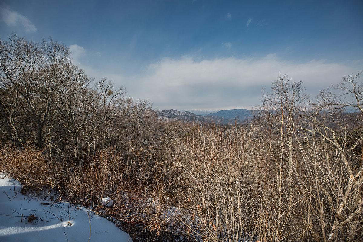 【子檀嶺岳 田沢嶺浦コース】登山百景-山頂はそこ