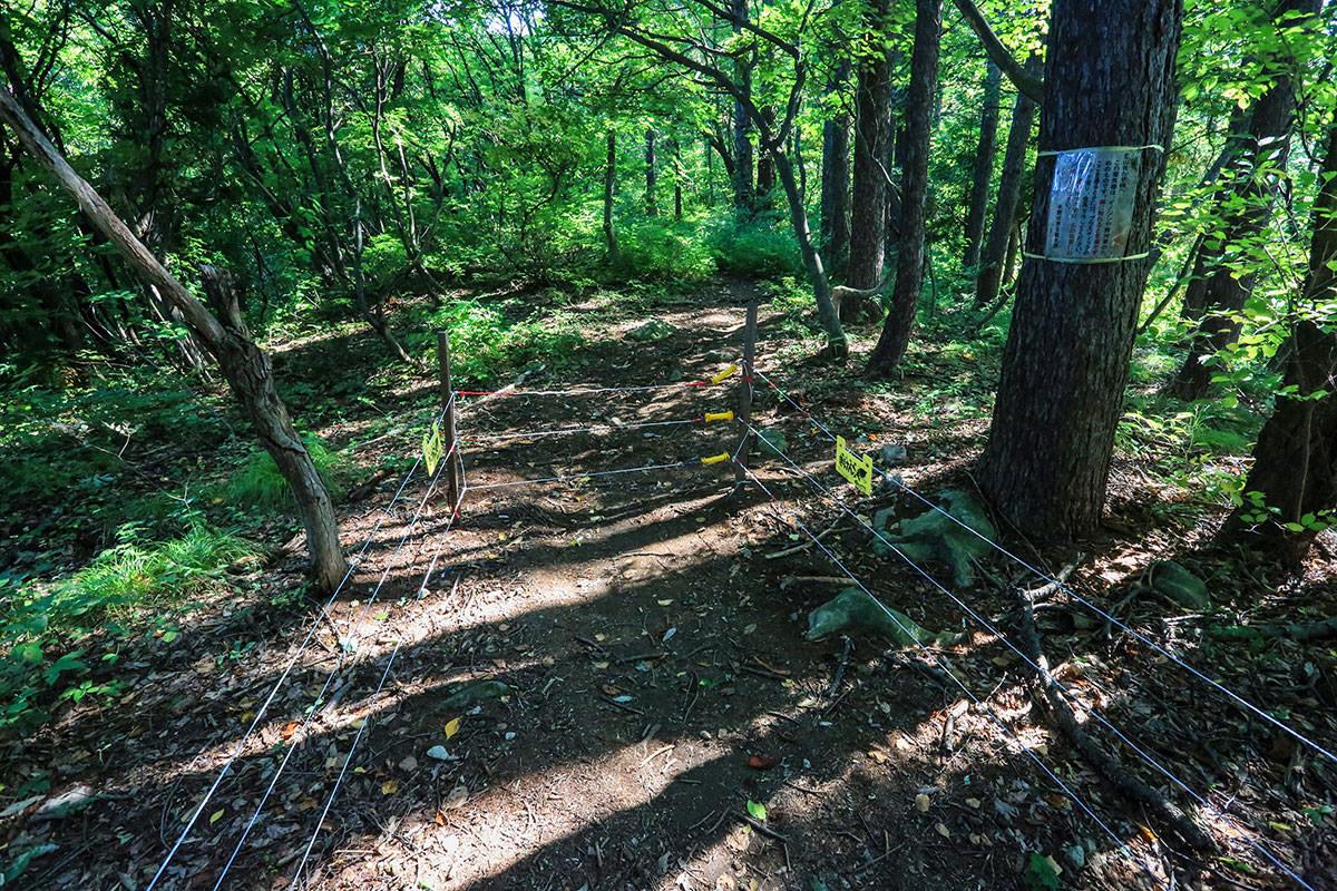 【高社山】登山百景-電柵を通過