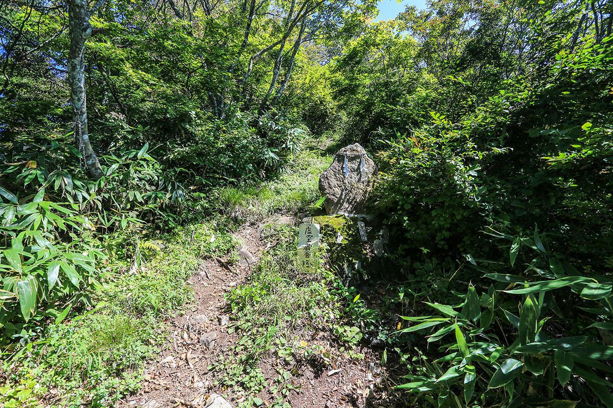 【高社山】登山百景-尾根ルートを登る