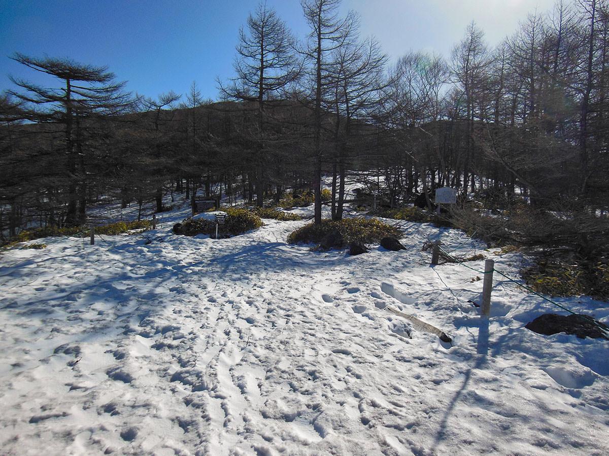 【黒斑山】登山百景-まだ雪が多い
