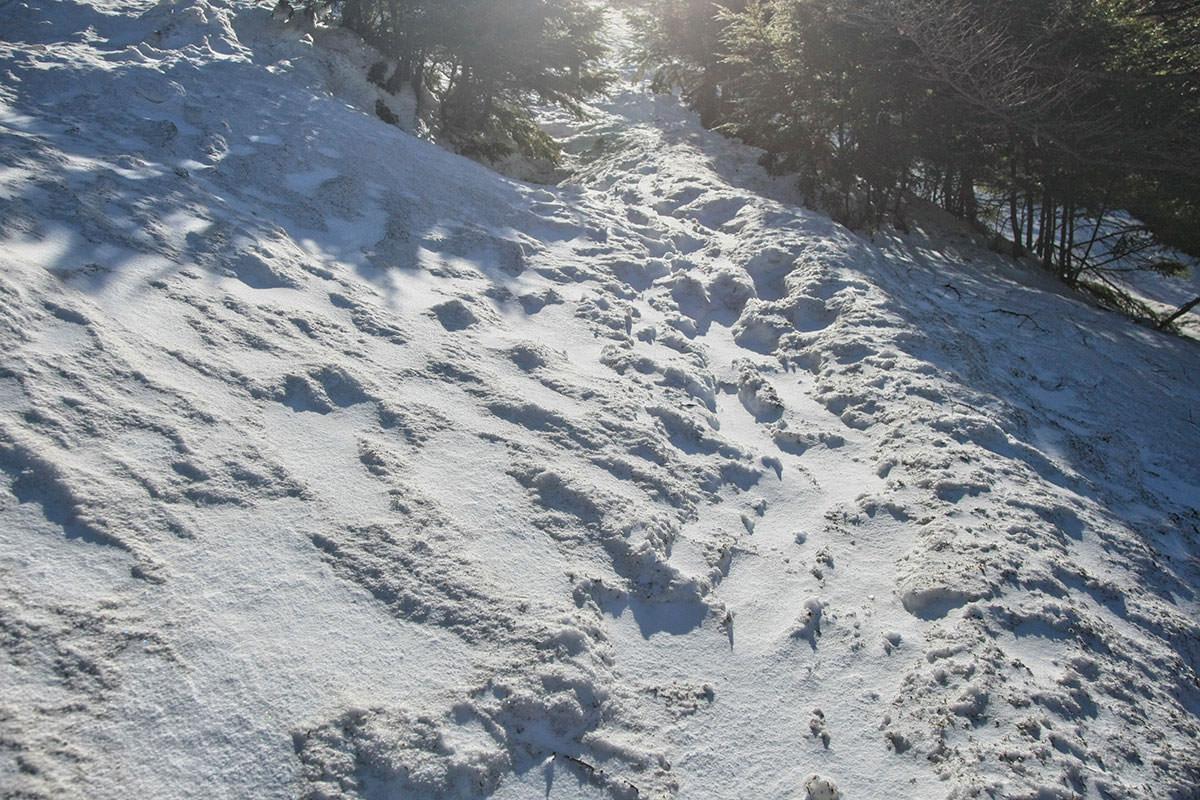 【黒斑山】登山百景-雪道はシャリシャリ