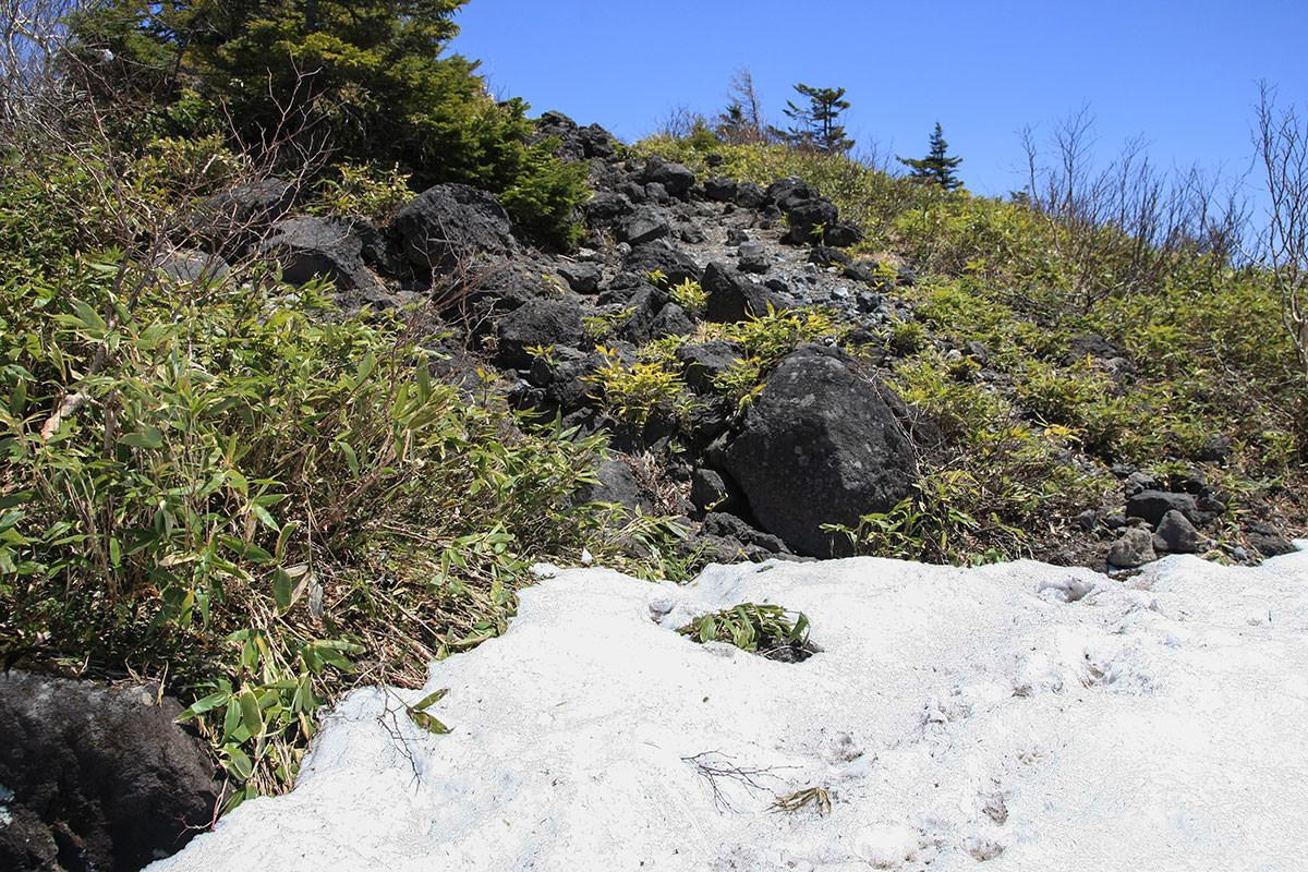 【黒姫山 西新道】登山百景-雪が無くなって熔岩石