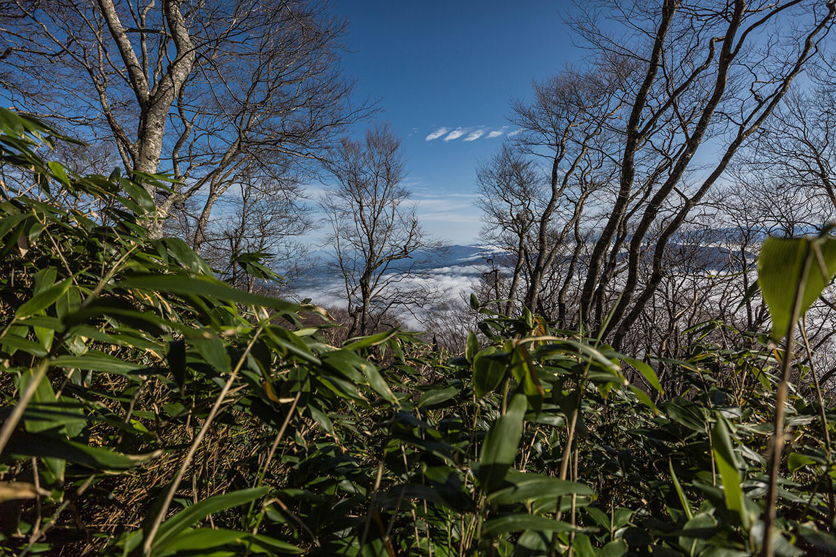 【黒姫山】登山百景-振り返ると雲海が見える