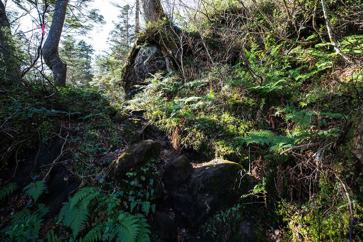 【黒姫山】登山百景-岩は滑りやすい