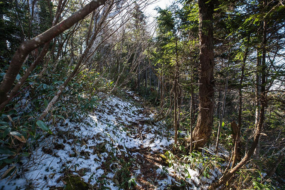 【黒姫山】登山百景-日影に雪が残っている