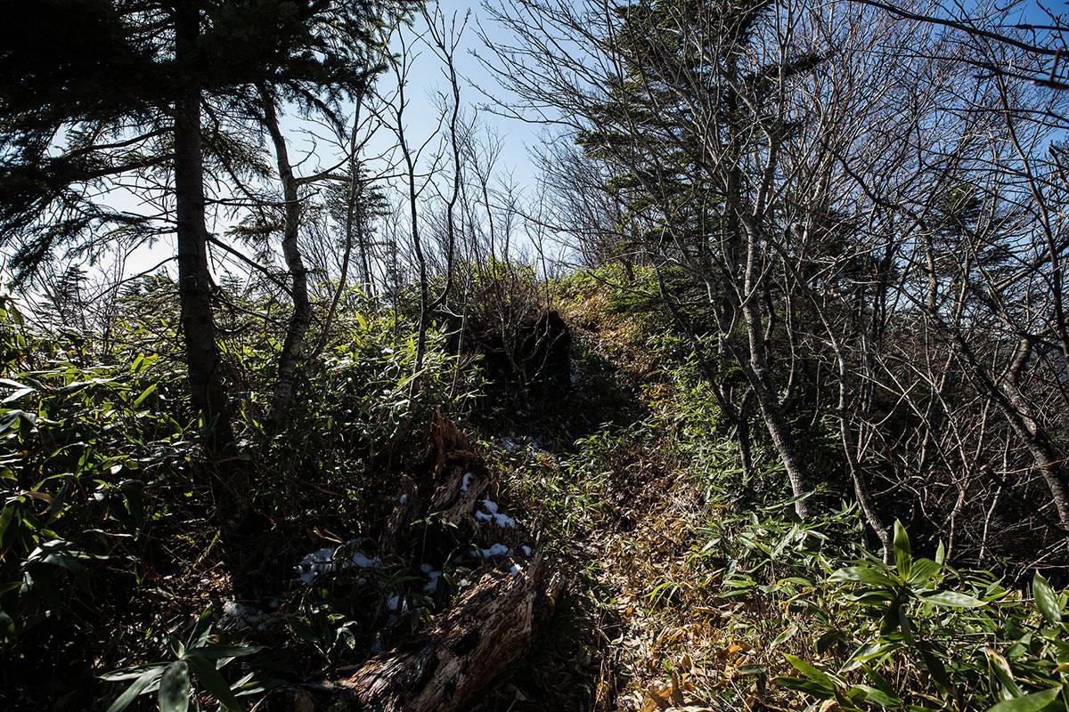 【黒姫山】登山百景-山頂はそこ