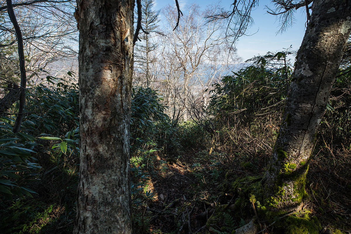 【黒姫山】登山百景-一気に下る