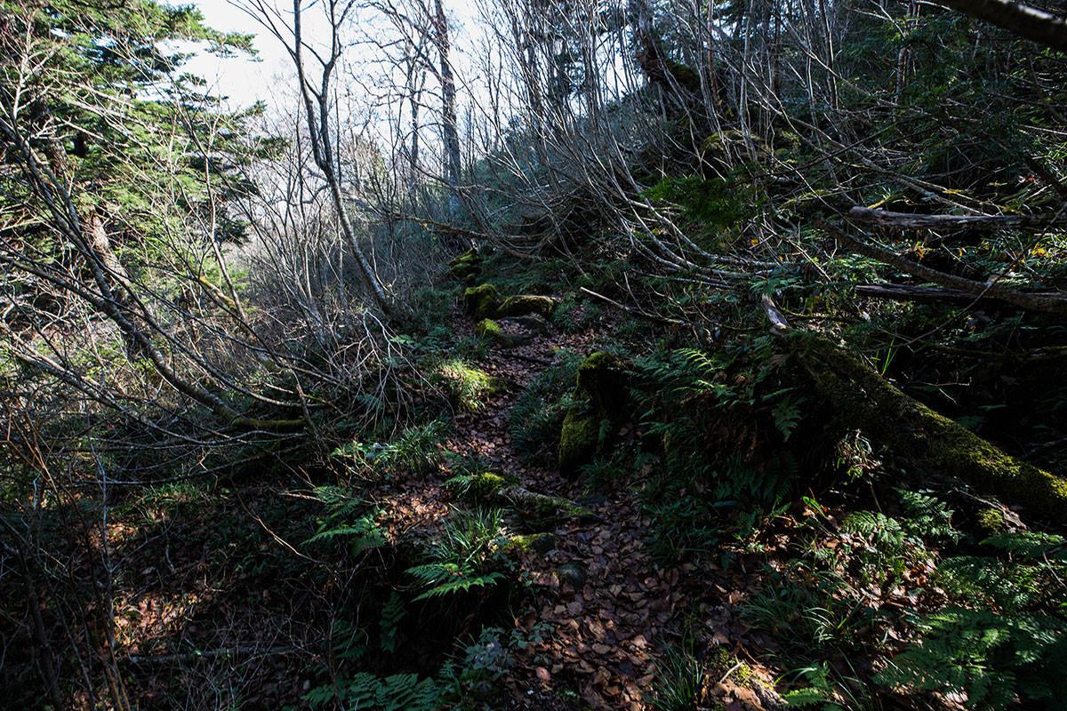 【黒姫山】登山百景-斜面を横切るように続く