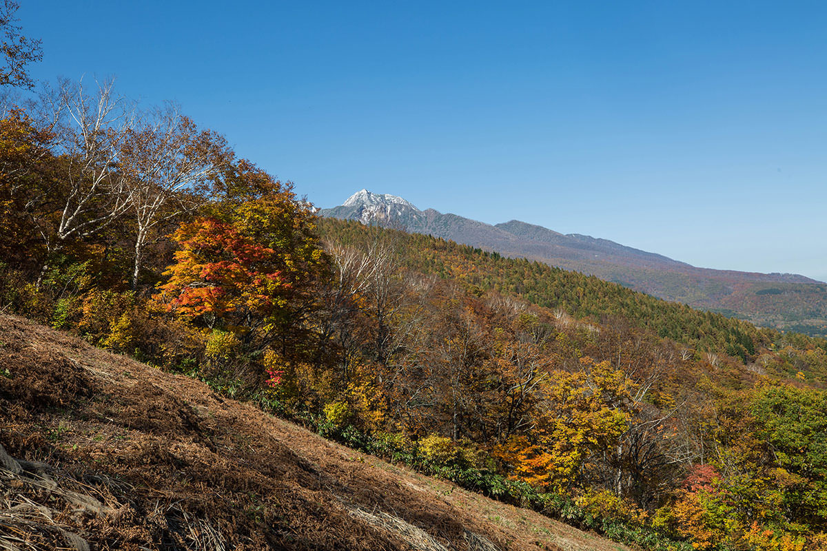 【黒姫山】登山百景-妙高山を見上げる