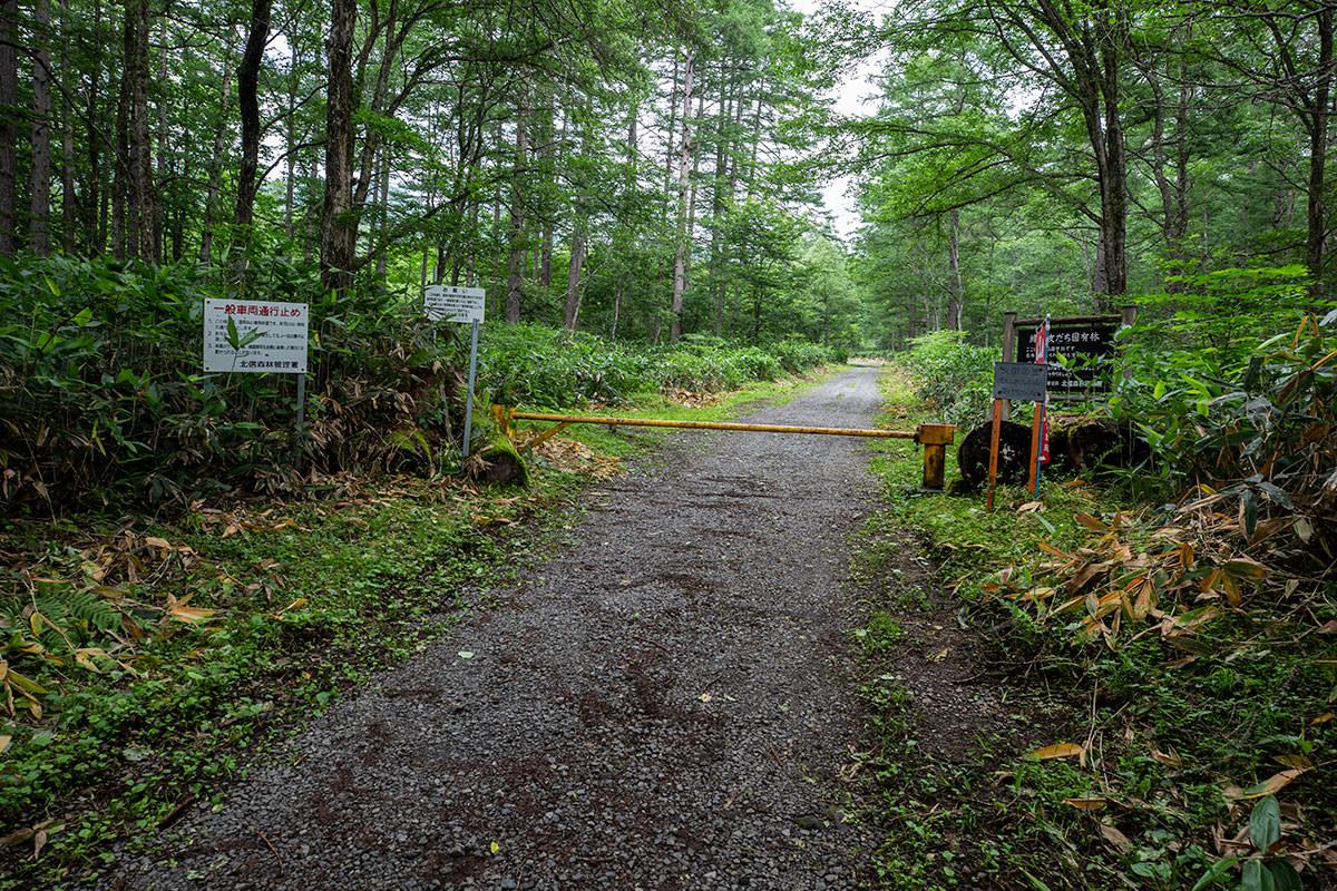 ゲートから林道を通って登山道へ