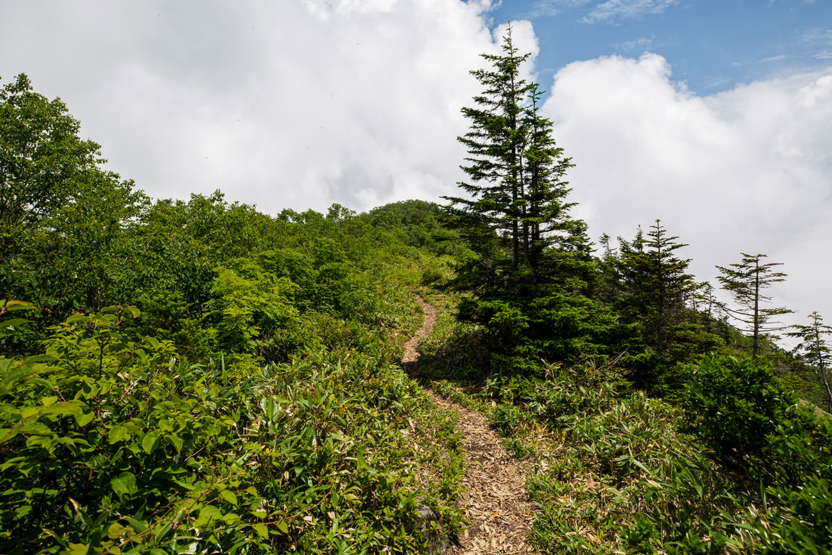 稜線を山頂へ向かう