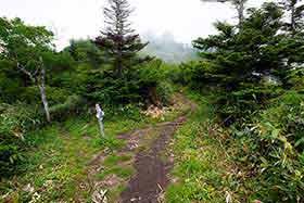 西登山道と合流