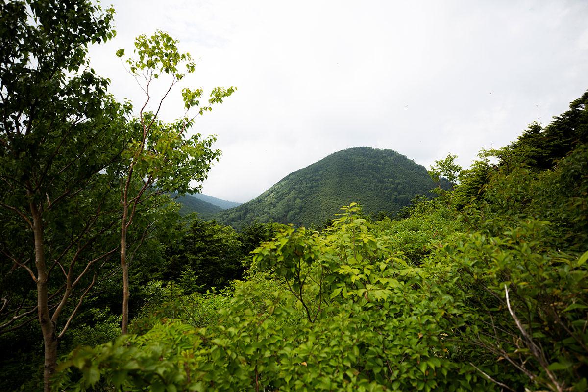 御巣鷹山がすぐそこ