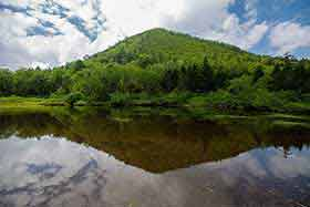 峰の大池から御巣鷹山を見上げてみる