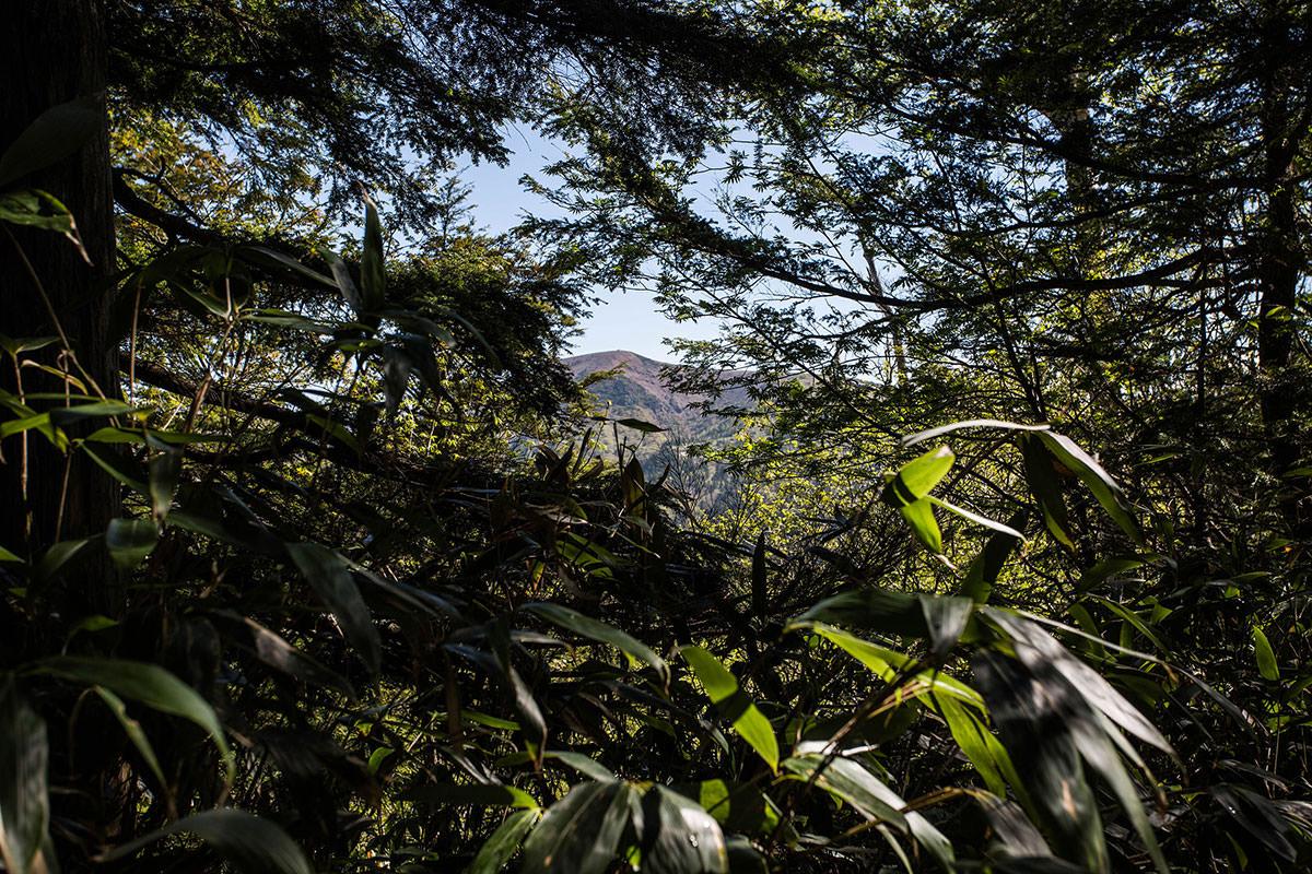 【本白根山 万座温泉】登山百景-草津白根山が見えた