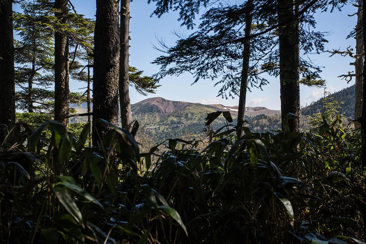 【本白根山 万座温泉】登山百景-草津白根山がよく見える