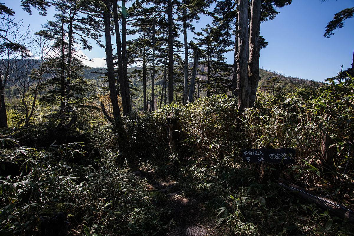 【本白根山 万座温泉】登山百景-目指す最高地点