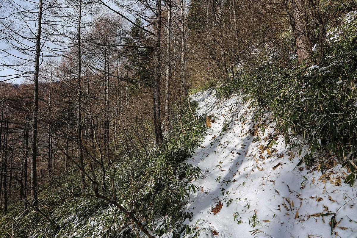 雪が増えた