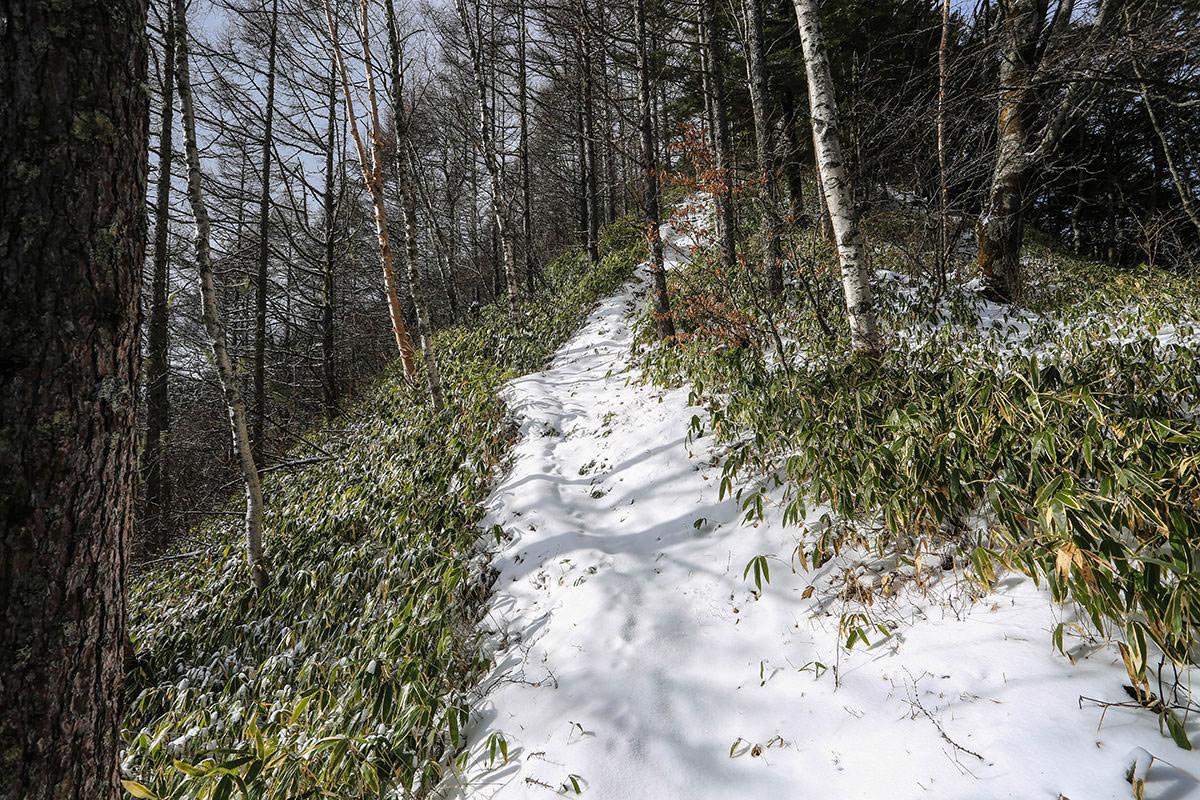 【経ヶ岳】登山百景-凍った枝もチラホラ