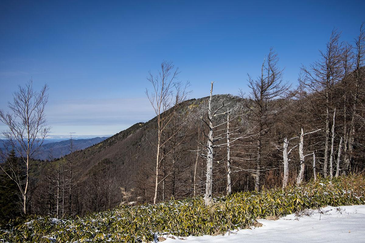 経ヶ岳の山頂も見える