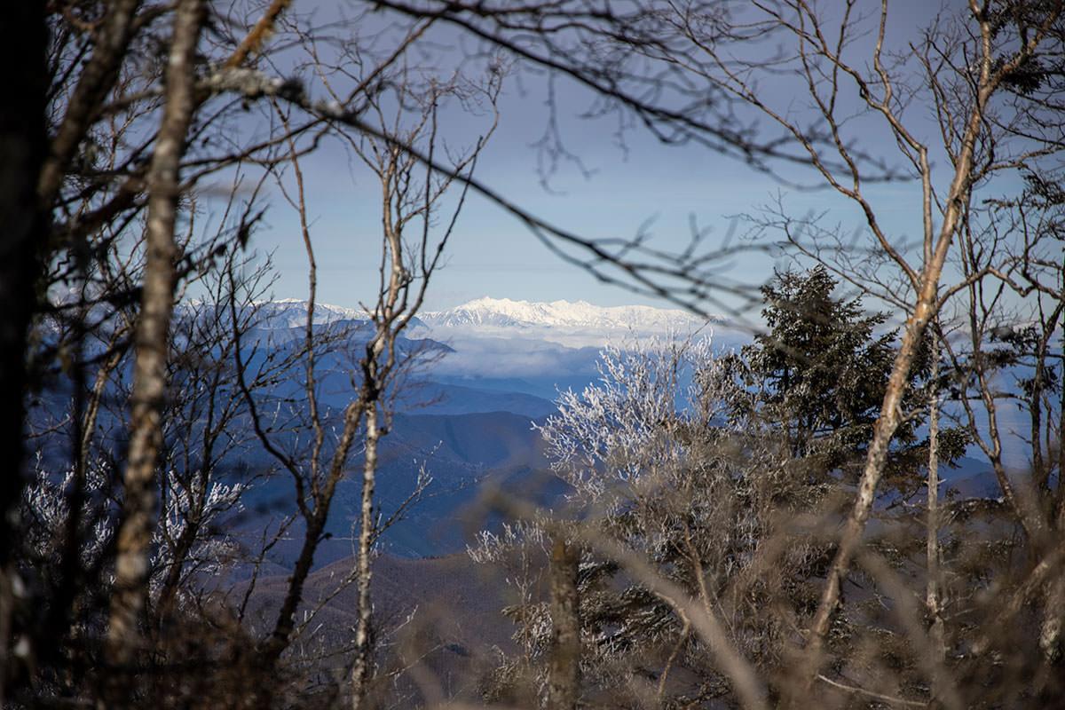 木の間から後立山が見える