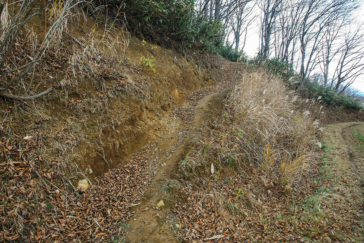 【斑尾山】登山百景-ゲレンデへ入る坂道