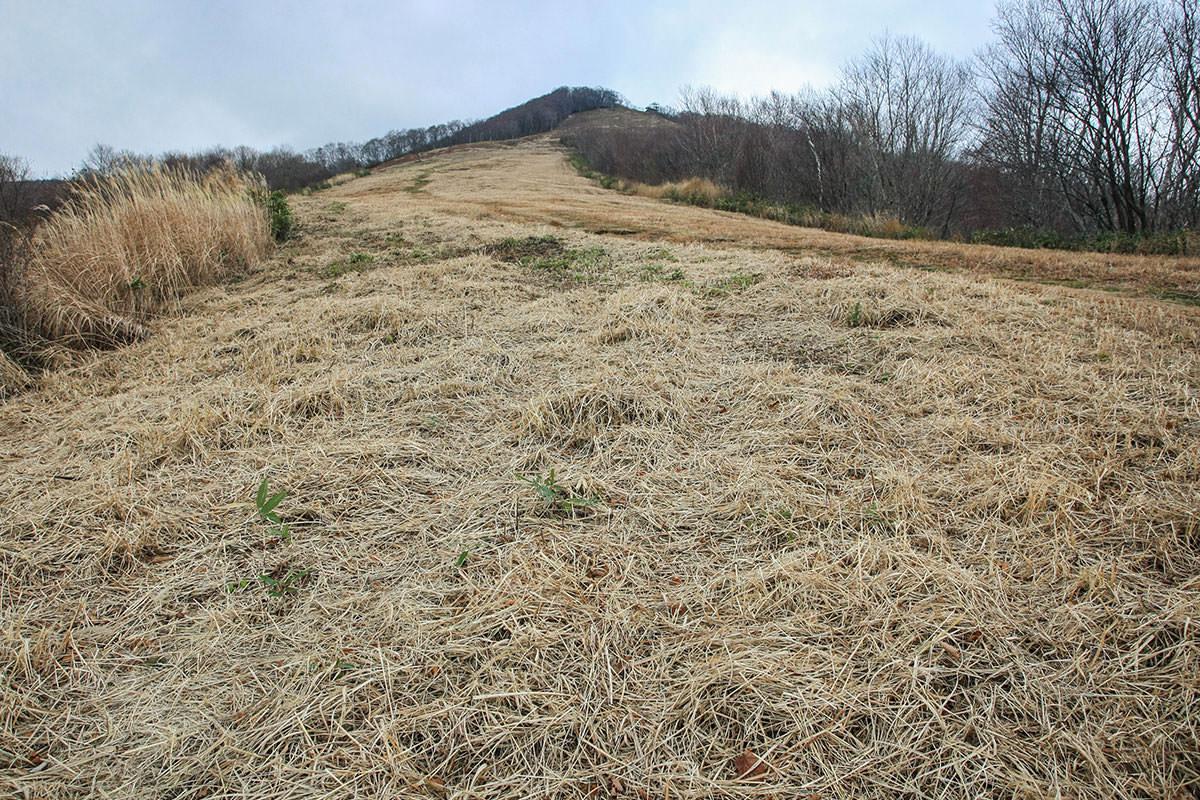 【斑尾山】登山百景-ゲレンデの急坂スタート