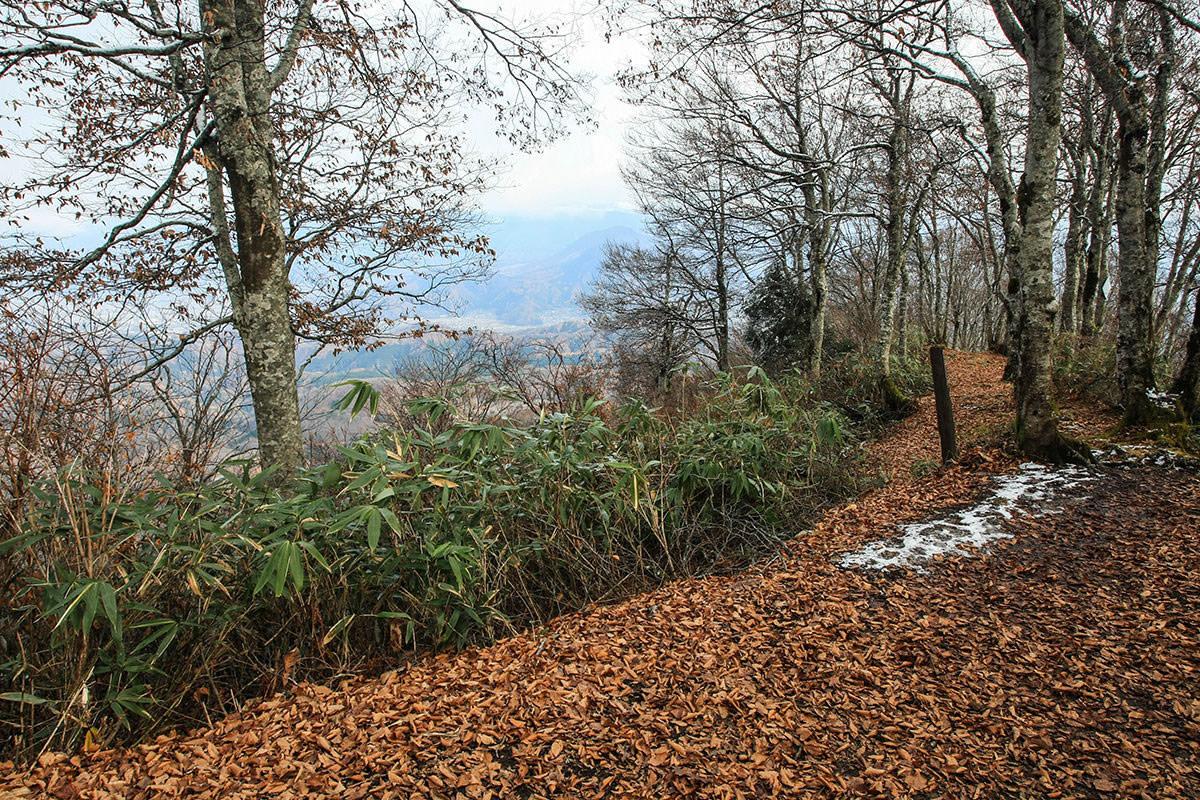 【斑尾山】登山百景-反対側へ下りる道