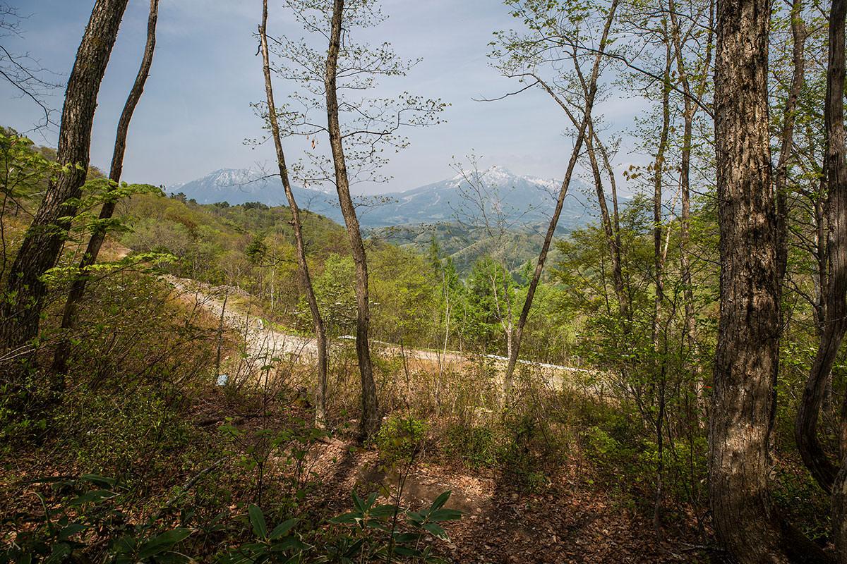 【斑尾山 菅川】登山百景-さっそく妙高山が見える