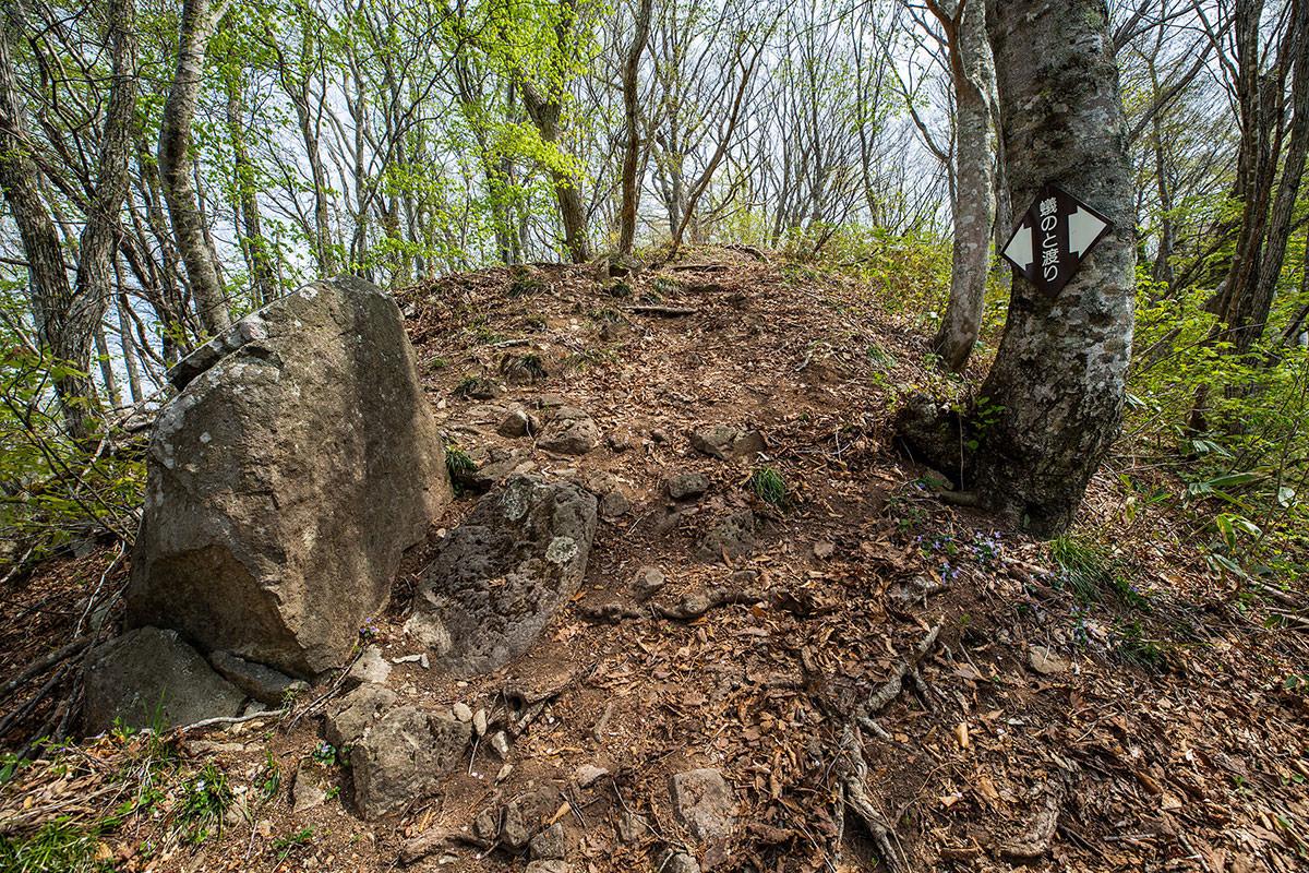 【斑尾山】登山百景-蟻の塔渡り