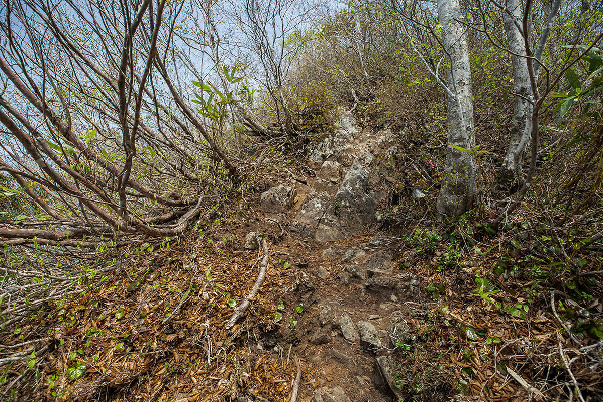 【斑尾山】登山百景-大明神岳直下の岩場