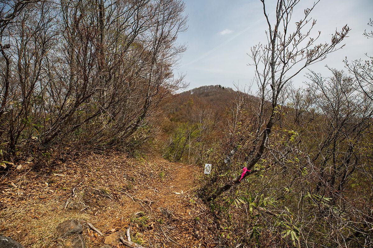 【斑尾山 菅川】登山百景-斑尾山山頂はアレ