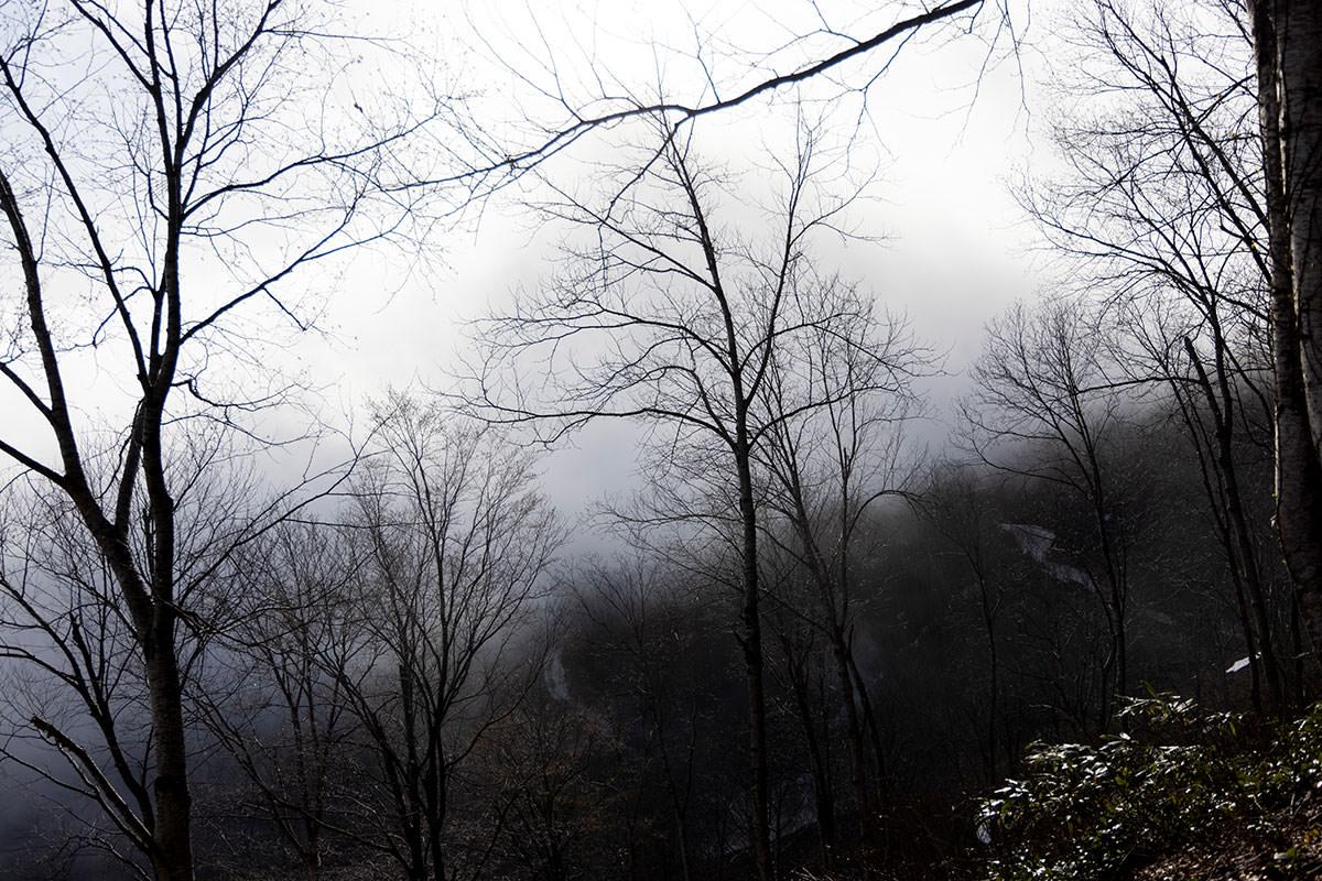 東側は厚い雲