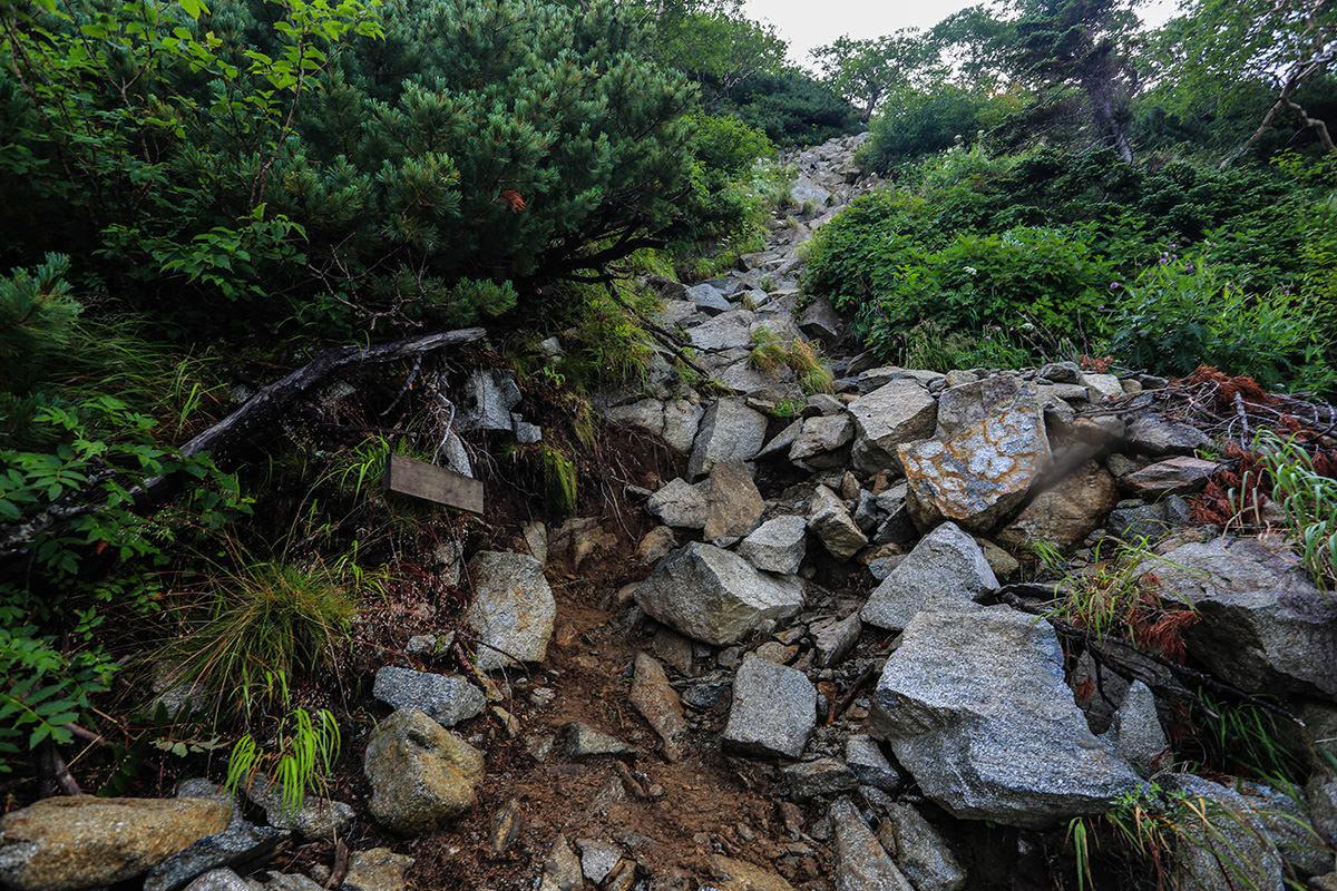 【前穂高岳】登山百景-視界に虫がいっぱい