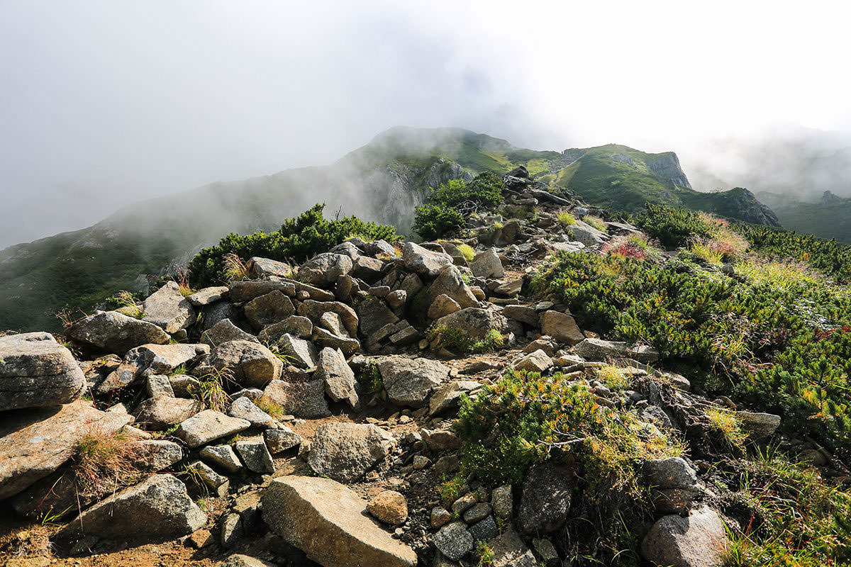【前穂高岳】登山百景-森林限界に出た
