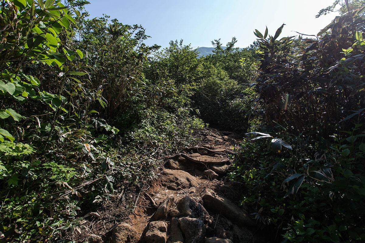 【巻機山】登山百景-ニセ巻機山が見える