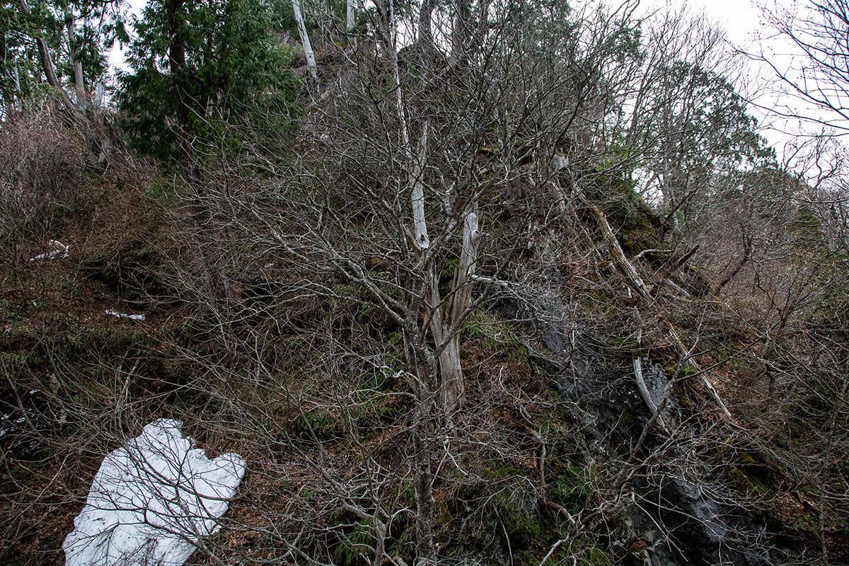 【万仏山】登山百景-岩尾根を上部へ登る