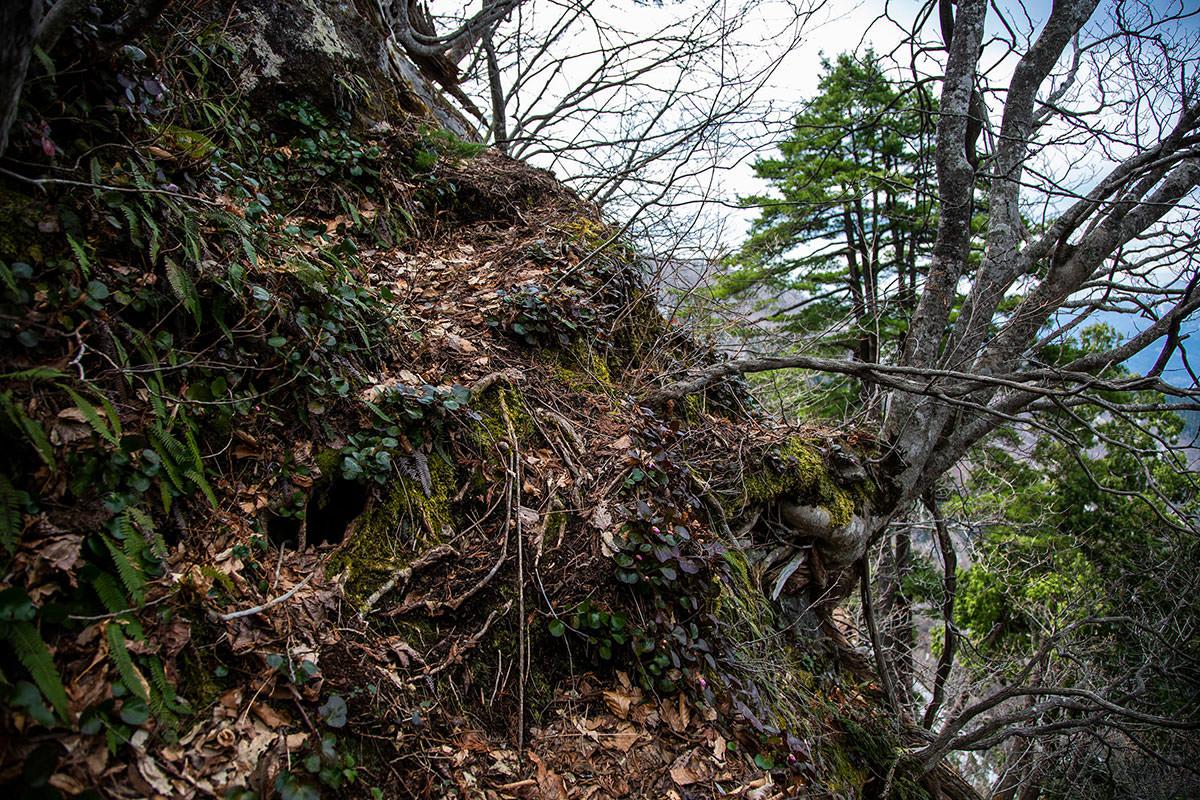 【万仏山】登山百景-登りも狭い