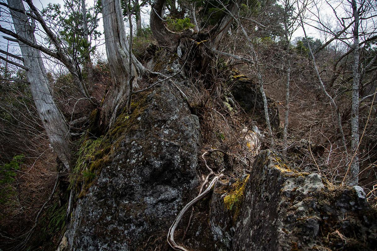【万仏山】登山百景-岩の上を歩く