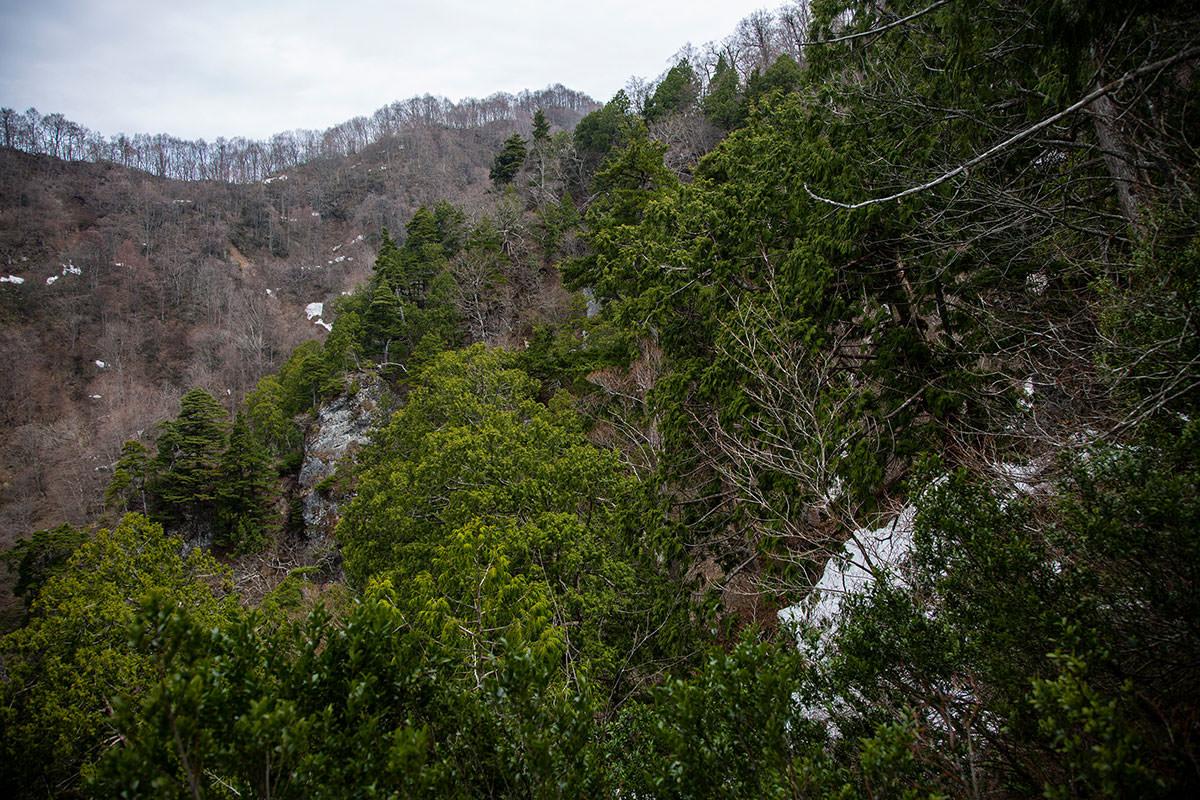 【万仏山】登山百景-稜線が近くなった